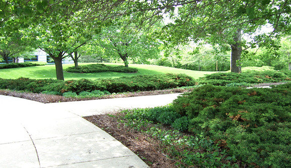 Landscaping outdoors