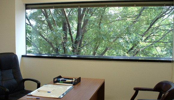 Window office 1
